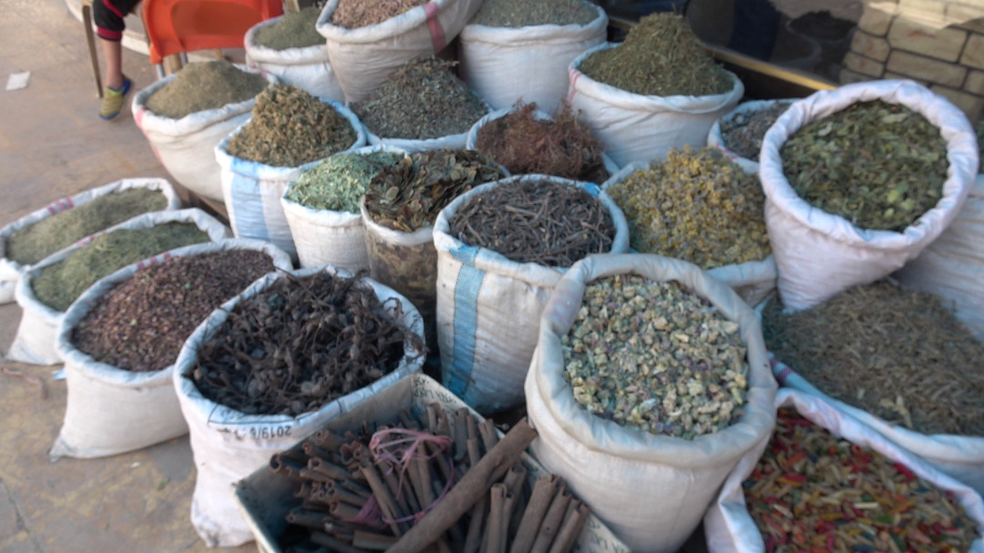 Herbal Medicine    Between past and present